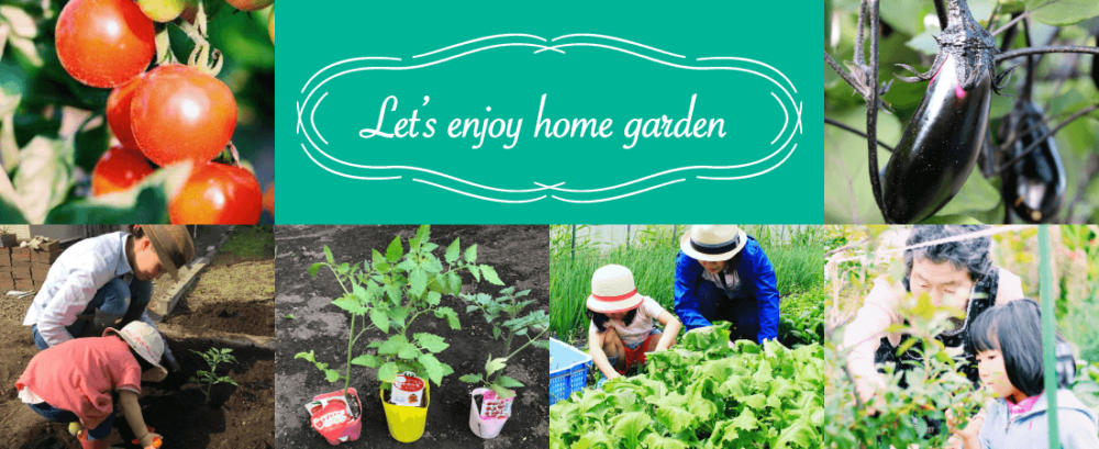 homegarden_main