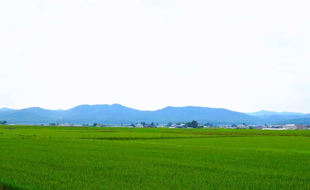 takasu_01